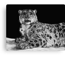 Snow King - snow leopard Canvas Print