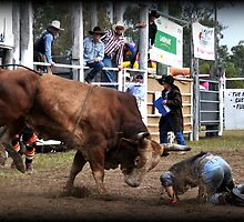 Rodeo, Roughed Up by Barbara  Jean