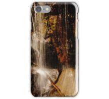 Under the Falls iPhone Case/Skin