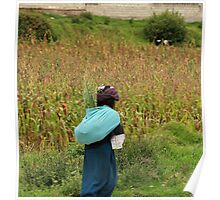 Indigenous Woman Carrying Onions Poster