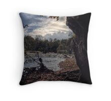 Scenic River Throw Pillow