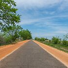 """Ribbon Road"", a.k.a. ""Sidewalk highway"", on Route 66, Miami, OK by swtrekker"