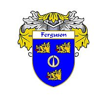 Ferguson Coat of Arms/Family Crest Photographic Print