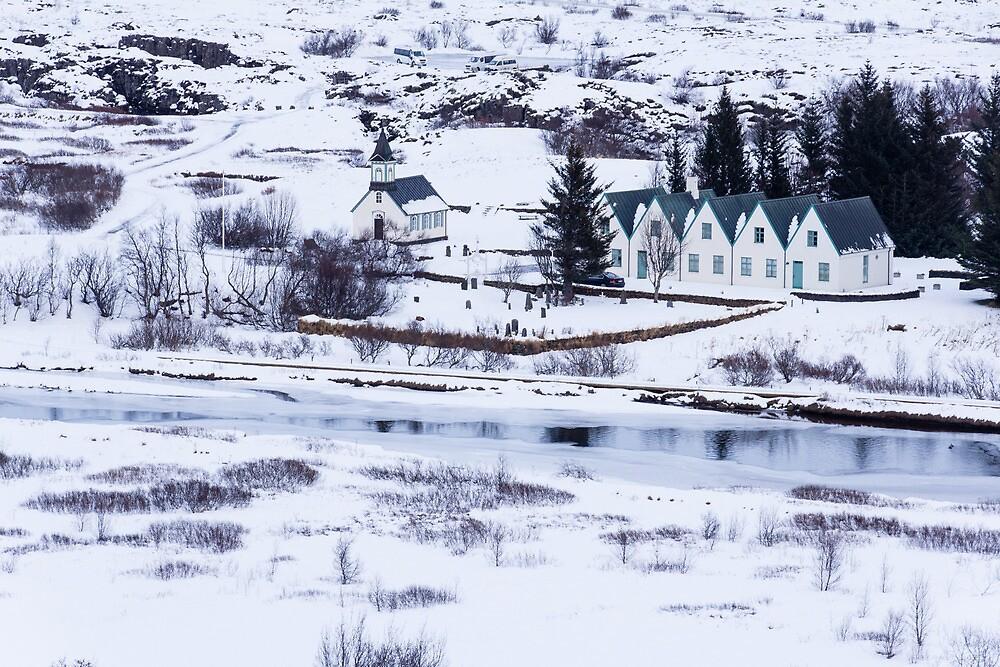 Winter Scene by Wendy Williams