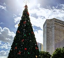 Miami Christmas Tree by njordphoto