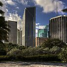 Miami Skyscrapers by Bill Wetmore