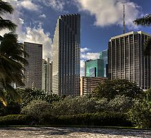 Miami Skyscrapers by njordphoto