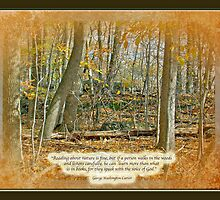 Autumn Forest - George Washingron Carver Quote by MotherNature2