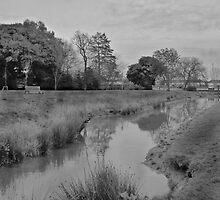 Valence Park by Sandra Caven
