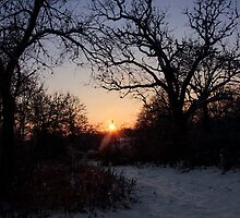 Snowy Sunset by Debra Fedchin