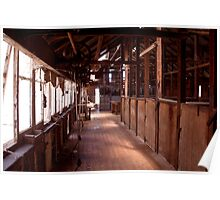 Quiet Shearing Shed Poster