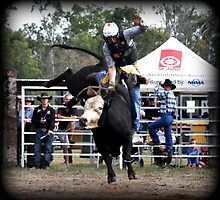 Rodeo, Rank Ride by Barbara  Jean