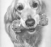 Labrador commission by Karen Townsend