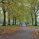 Green Park London by Stephen Dean