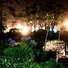 Umperstein Sinkhole at Night by Stephen Dean