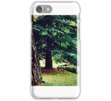 Ragged Majesty iPhone Case/Skin