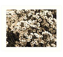 Flowery Prints, Cards n' Posters Art Print