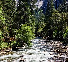 Merced River Rapids - Yosemite National Park California USA by TonyCrehan