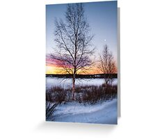 Stripped for winter Greeting Card