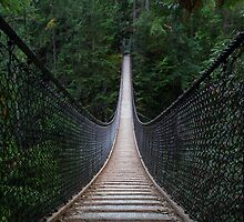 Lynn Canyon Suspension Bridge by Michael Russell