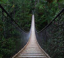 Lynn Canyon Suspension Bridge by Michael Russell