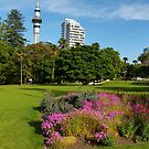 Auckland by PhotosByG