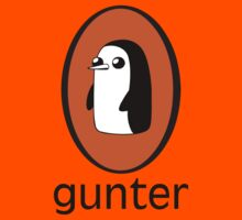 Gunter Books by innercoma