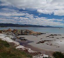 Bicheno, East Coast, Tasmania  by Eunice Atkins