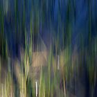 In The Reeds by Ben Loveday