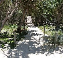 Beach Path. by FangFeatures