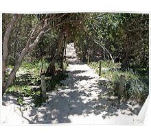 Beach Path. Poster