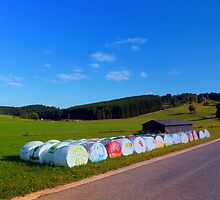 Hayballs in the summer by Patrick Jobst