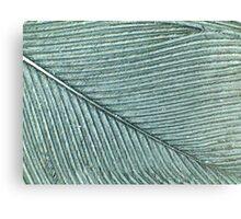 Dragonworld: Feather Canvas Print