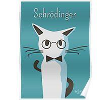 Schrodinger Poster