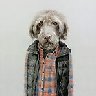 dog in shirt by windzao