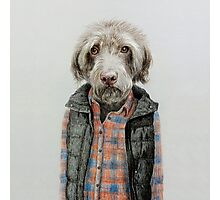 dog in shirt Photographic Print