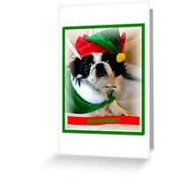 Bah Humbug! Greeting Card
