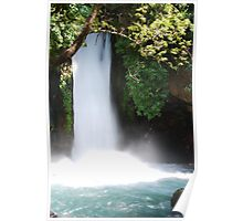 Israeli Waterfall Poster