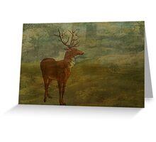 Looking for Landseer Greeting Card
