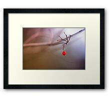 Red and remaining.... Framed Print