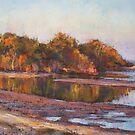 Lake Cathie - golden glow by Terri Maddock