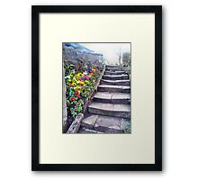 Step and Flowers. Framed Print