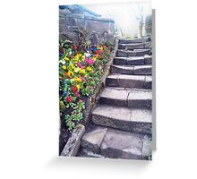 Step and Flowers. Greeting Card