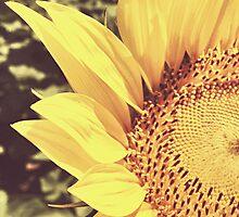 Sunflower by Emilie J. N. Pelka