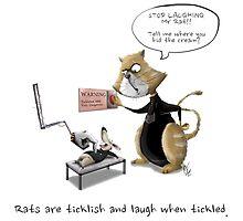 Ticklish Rats Photographic Print