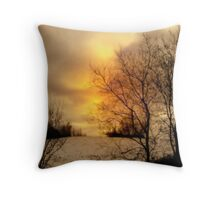 Fiery Evening ! Throw Pillow