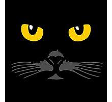 Cat Face Photographic Print