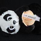 Romancing The Panda by v-something