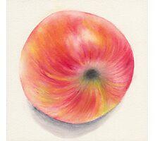 Fallen apple Photographic Print
