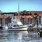 Bergen Harbour -- Tigerlill by Larry Lingard-Davis